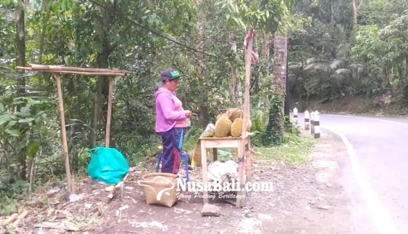www.nusabali.com-imbas-abu-vulkanik-buah-durian-tidak-maksimal