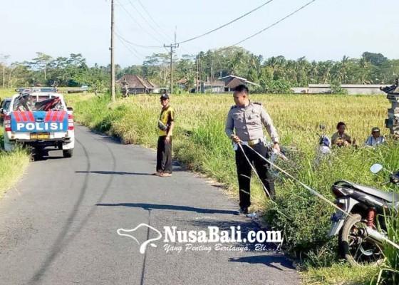 Nusabali.com - tabrak-pantat-truk-pemotor-tewas-di-tempat