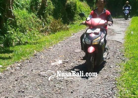 Nusabali.com - jalan-tak-kunjung-diperbaiki-diduga-korban-politik