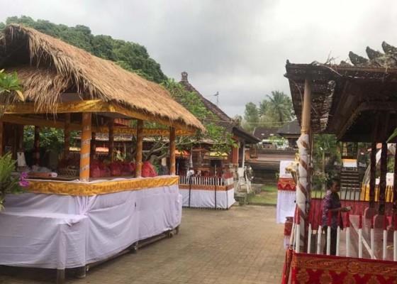 Nusabali.com - gunakan-bade-setinggi-20-meter-dengan-berat-5-ton