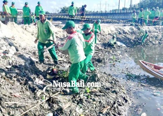 Nusabali.com - dlhk-badung-sulam-mangrove-yang-mati