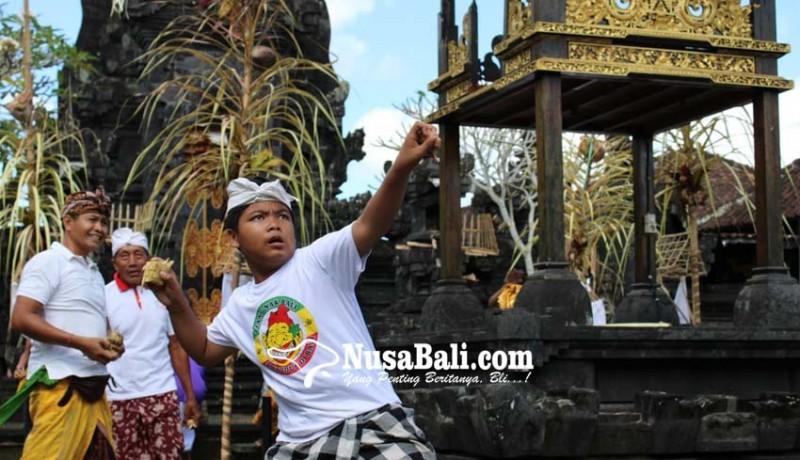 www.nusabali.com-perang-tipat-tradisi-mensyukuri-panen-padi
