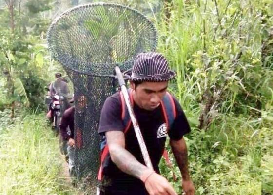 Nusabali.com - vaksinasi-rabies-massal-sasar-kelurahan