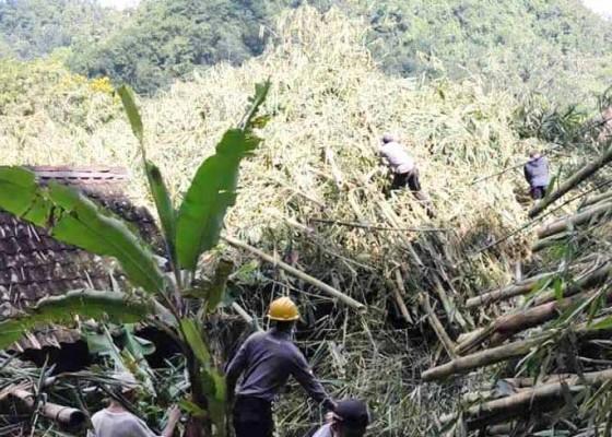 Nusabali.com - rumah-tertimbun-rumpun-bambu