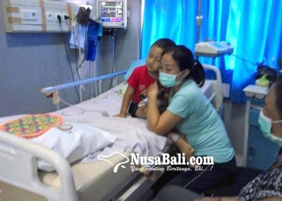 Nusabali.com - januari-april-67-kasus-db-serang-warga-bangli