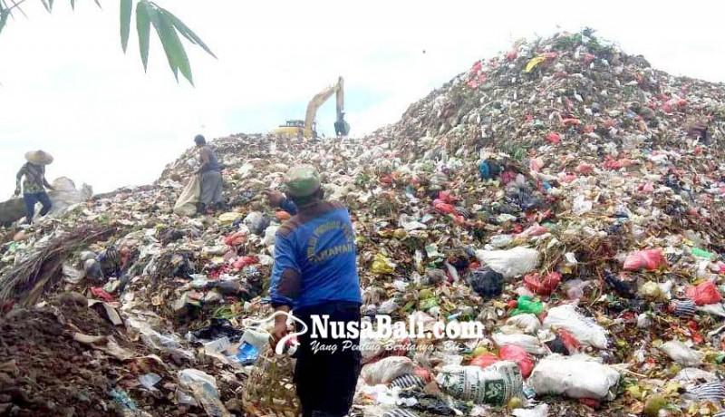 www.nusabali.com-lima-bulan-sampah-pemulung-tpa-mandung-bernilai-rp-40-juta
