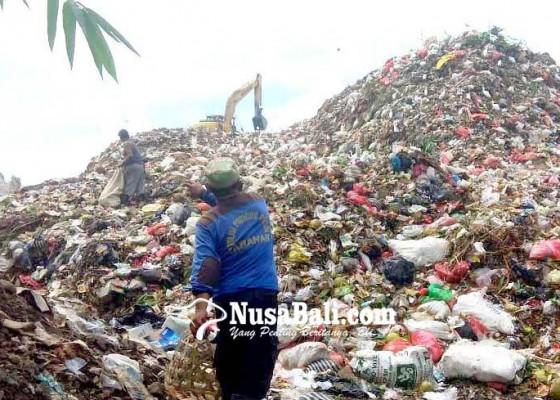 Nusabali.com - lima-bulan-sampah-pemulung-tpa-mandung-bernilai-rp-40-juta