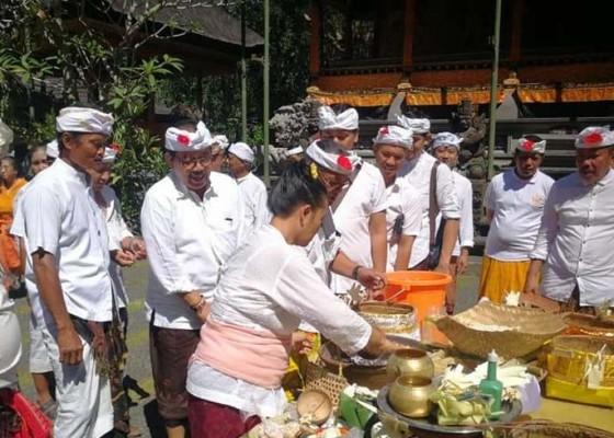 Nusabali.com - krama-ubud-siapkan-karya-di-gunung-lebah