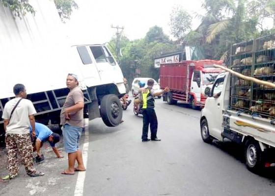 Nusabali.com - 4-bulan-14-truk-mogok-di-wilayah-tabanan