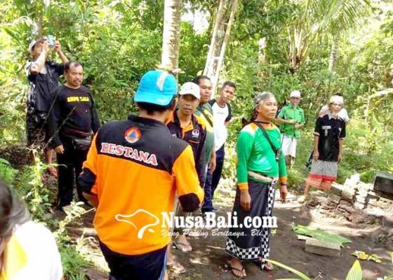 Nusabali.com - gabungan-relawan-pasang-rpu-di-puncak-badabudu