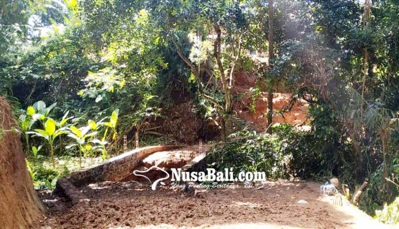 www.nusabali.com-krama-desa-pakraman-puseh-akan-gelar-pecaruan-dan-guru-piduka