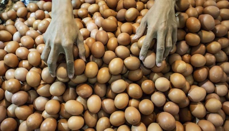 www.nusabali.com-puasa-harga-telur-cenderung-turun
