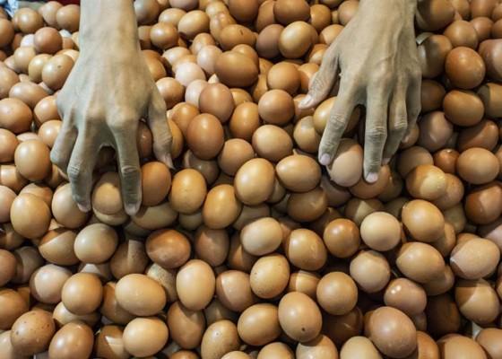 Nusabali.com - puasa-harga-telur-cenderung-turun