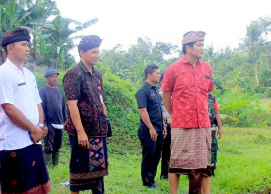 Nusabali.com - kembangkan-rth-di-dua-kelurahan-siapkan-anggaran-rp-125-miliar