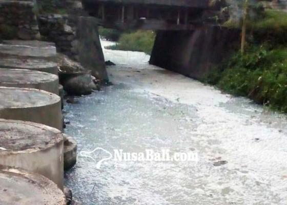 Nusabali.com - limbah-pabrik-sarden-cemari-teluk-limo