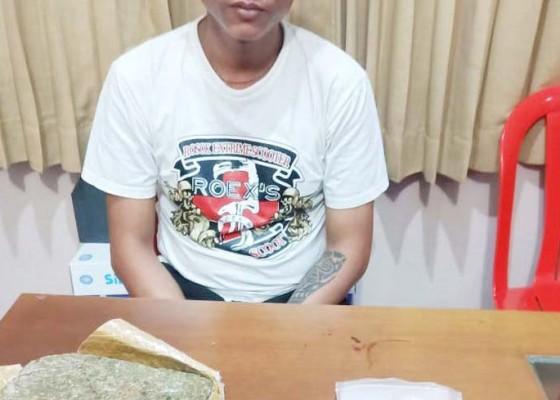 Nusabali.com - bekuk-kurir-polda-amankan-1-kg-ganja