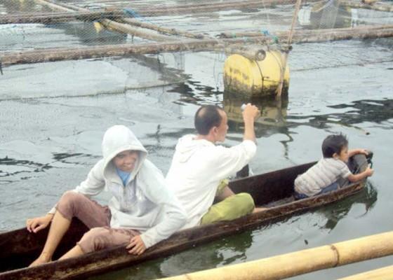 Nusabali.com - dinas-pkp-tebar-230-ribu-benih-nila-di-danau-batur
