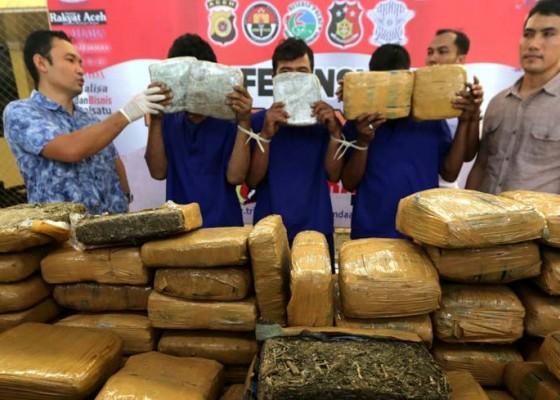 Nusabali.com - pengiriman-1-ton-ganja-ke-jakarta-digagalkan