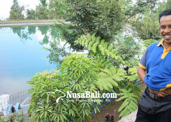 Nusabali.com - dua-embung-di-karangasem-airnya-tercemar-abu-vulkanik