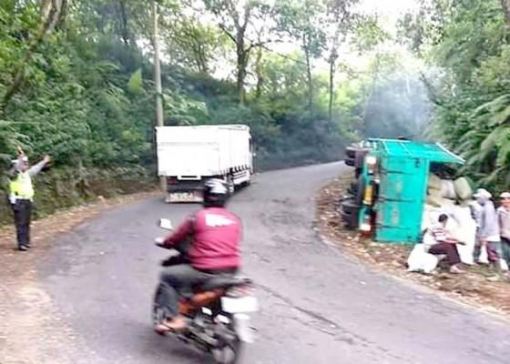 Nusabali.com - sarat-beban-truk-muatan-jagung-terguling