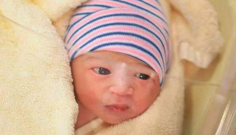 www.nusabali.com-baru-5-hari-lahir-65-ribu-followers