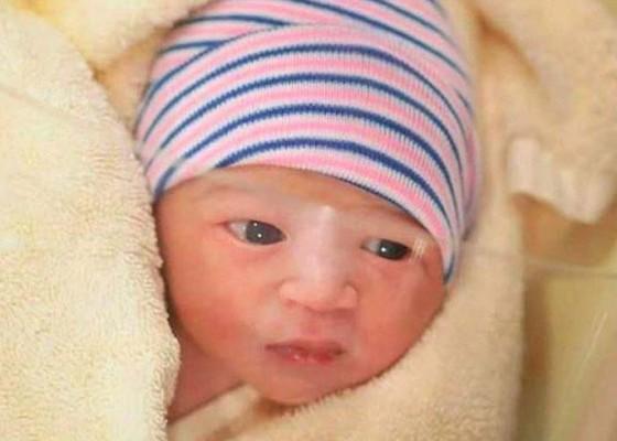 Nusabali.com - baru-5-hari-lahir-65-ribu-followers