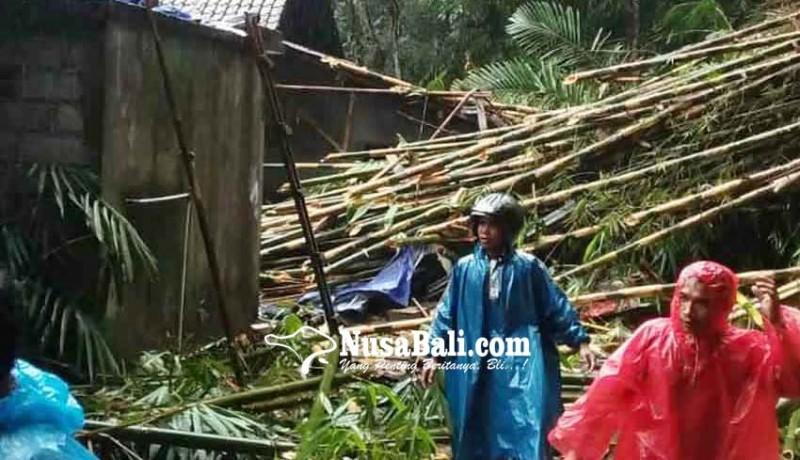 www.nusabali.com-rumah-kelian-rusak-tertimpa-rumpun-bambu