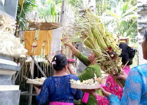 Nusabali.com - prewedding-kemajuan-baru