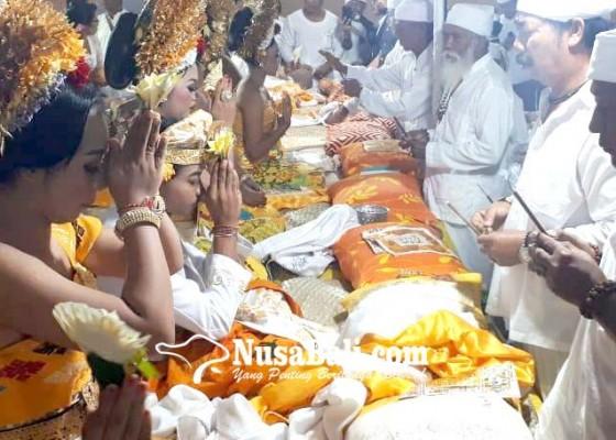 Nusabali.com - pertamakali-digelar-di-desa-pecatu-metatah-massal-diikuti-104-krama