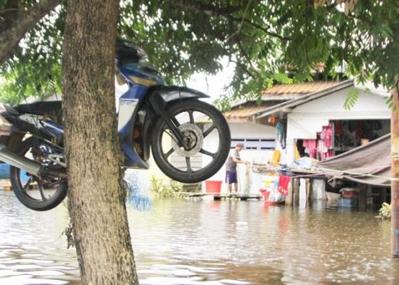 Nusabali.com - bnpb-5847-kk-terdampak-banjir-di-konawe