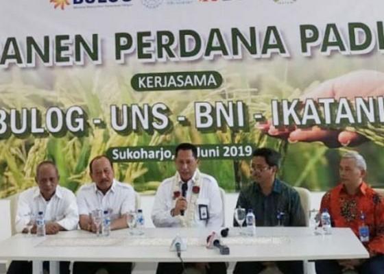 Nusabali.com - kartel-kuasai-pangan-dalam-negeri