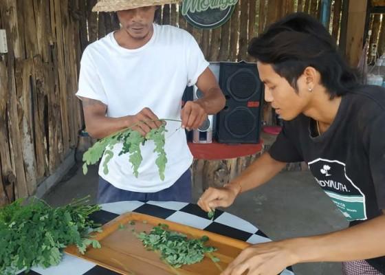 Nusabali.com - jadi-menu-andalan-menambah-khazanah-kuliner-bali-utara
