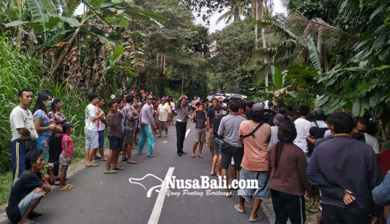www.nusabali.com-temuan-mayat-dalam-kardus-gegerkan-warga-sekampung
