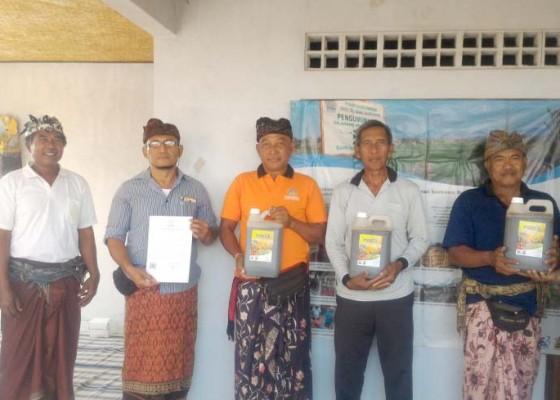 Nusabali.com - lestarikan-subak-desa-adat-anggabaya-unmas-denpasar-dorong-penggunaan-pupuk-organik-cair