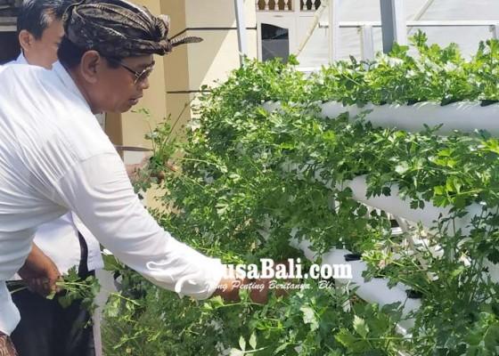 Nusabali.com - minat-pemuda-bertani-rendah