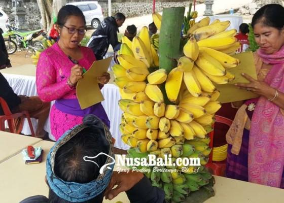 Nusabali.com - buah-unggulan-kontes-di-twin-lake-festival