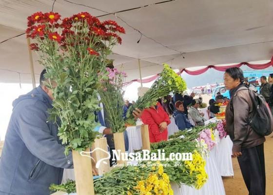 Nusabali.com - budidaya-bunga-florist-masih-minim