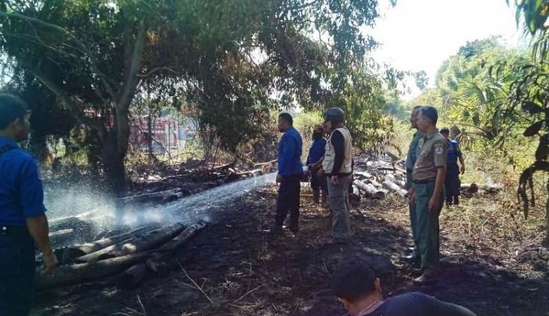 www.nusabali.com-diduga-lalai-hutan-tnbb-terbakar