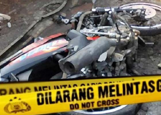 Nusabali.com - adu-jangkrik-jupiter-vs-rx-king-1-tewas