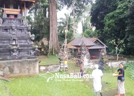 Nusabali.com - ada-palinggih-bhujangga-upacara-pantang-dipuput-sulinggih