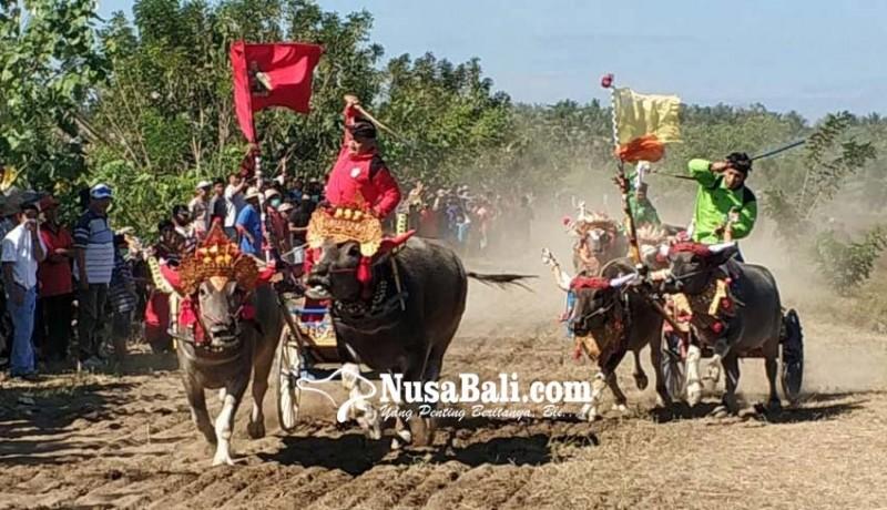 www.nusabali.com-gubernur-harap-lomba-makepung-masuk-kalender-pariwisata
