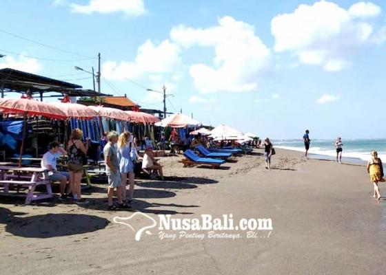 Nusabali.com - tak-terkait-gempa-ribuan-ikan-terdampar-di-pantai-batu-bolong
