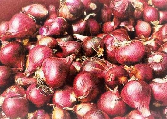 Nusabali.com - ri-ekspor-bawang-ke-negara-tetangga