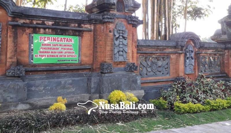 www.nusabali.com-500-tanaman-hias-digondol-maling