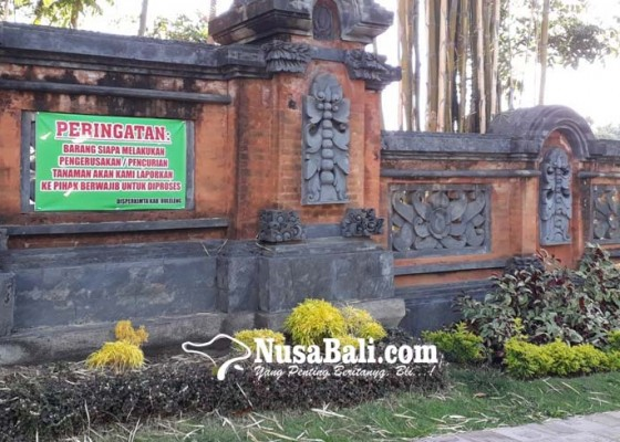 Nusabali.com - 500-tanaman-hias-digondol-maling