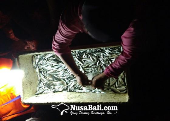 Nusabali.com - pantai-batu-bolong-jadi-wisata-ikan