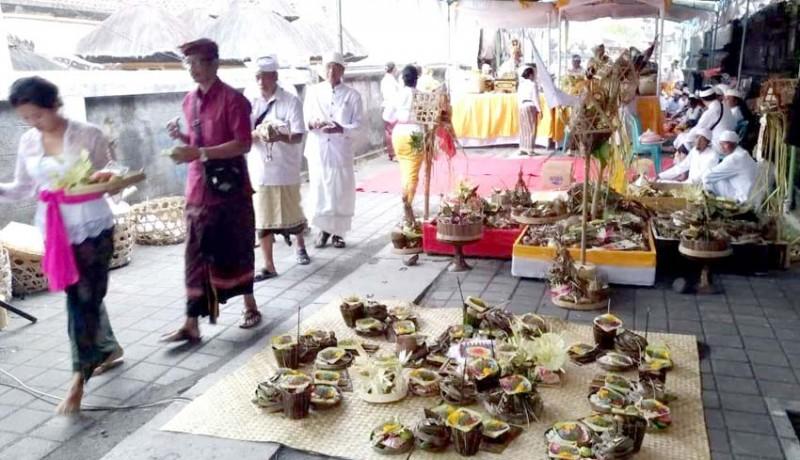www.nusabali.com-desa-adat-pecatu-gelar-upacara-pecaruan