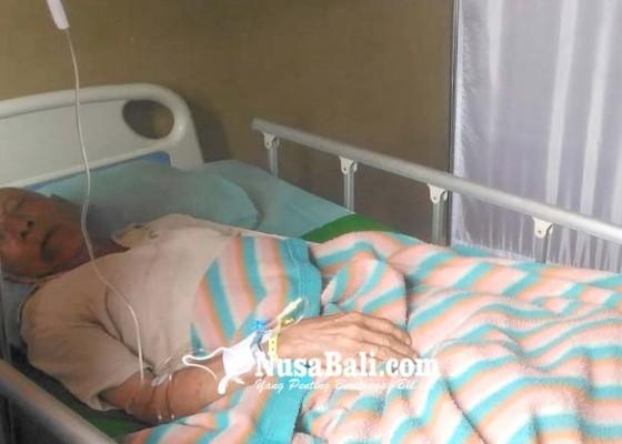 Nusabali.com - galungan-ke-rumah-anak-pekak-ditabrak