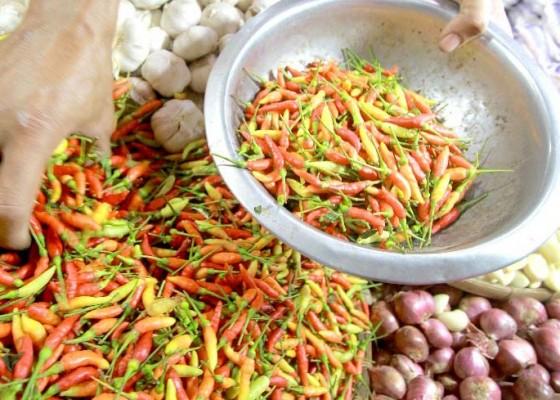 Nusabali.com - cabe-masih-di-atas-rp-70000