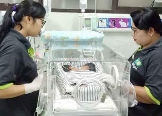 Nusabali.com - tunggu-stabil-bayi-kembar-siam-bakal-lanjut-pemeriksaan-angiografi
